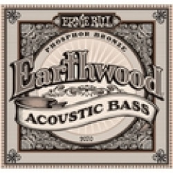 Ernie Ball 2070 Earthwood Acoustic Bass Strings 45-95 Phosphor Bronze