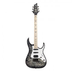 Schecter BANSHEE EXTREME-6-M-CB